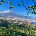 Тенерифе, вулкан Тейде, зима, снежная  шапка, зелень  плантаций