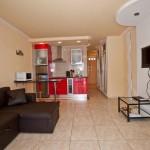 Комната - кухня Парк Рояль 1